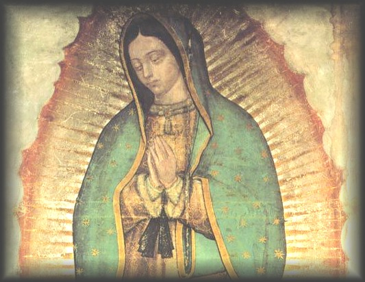 WELCOME! Dedicated to Our Lady of Guadalupe, patroness of the unborn